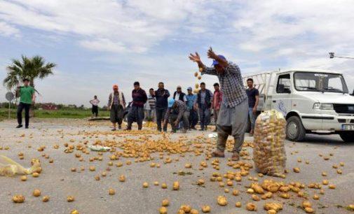 AKP döneminde tarım: Kredi borcu 105 milyara ulaştı