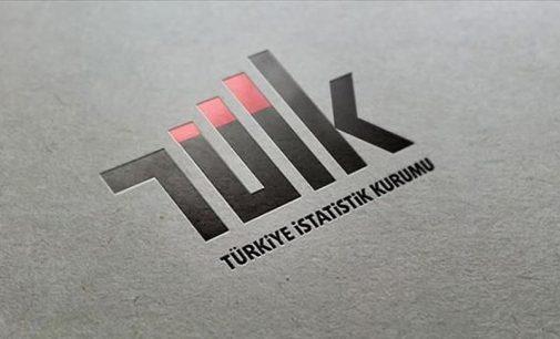 Türkiye İstatistik Kurumu danışma kurullarını lağvetti