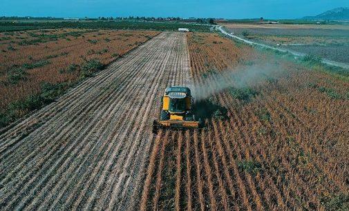 Araştırma: Türkiye'deki tarım toprağının yüzde 88'i sağlıksız