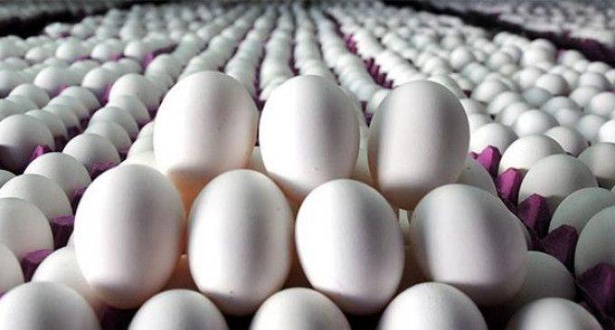 Yumurta fiyatlarındaki artış sürüyor: Bir ayda yüzde 30 zam