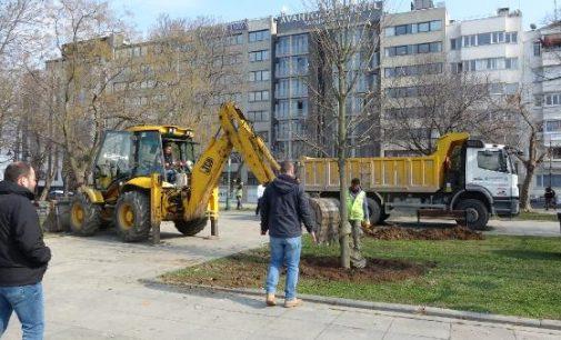 İBB, Gezi Parkı'na 150 ağaç dikiyor