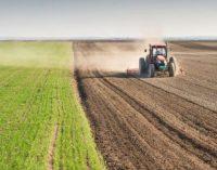 İki yılın en yüksek artışı: Tarımda enflasyon Temmuz'da yüzde 22.8 arttı