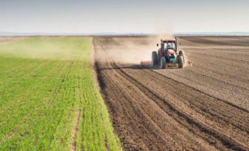 Tarımda üretici fiyatları yıllık yüzde 21.24 arttı