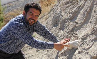 Kayseri'de fil izleri: Veterinerin bulduğu 7.5 milyon yıllık fosil bir file ait çıktı