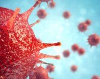 Koronavirüse karşı umut veren gelişme: Virüsü yenebilecek antikor geliştirildi