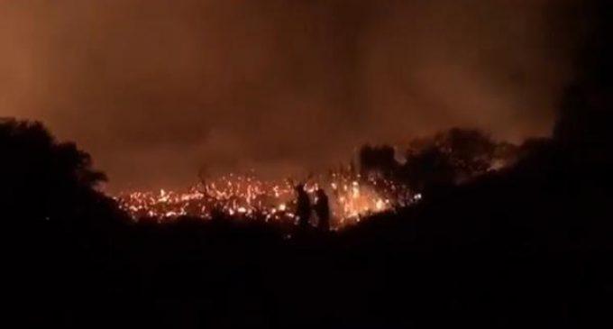 Kaş'ta orman yangını: Villalar boşaltılmıştı, yangın kontrol edildi