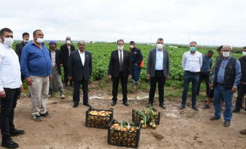 Soğan ve patates üreticileri: İthalat engellensin, ihracat açılsın