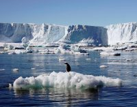 Bilim insanlarından çarpıcı veri: Dünyanın gördüğü en sıcak yıl 2020 olacak