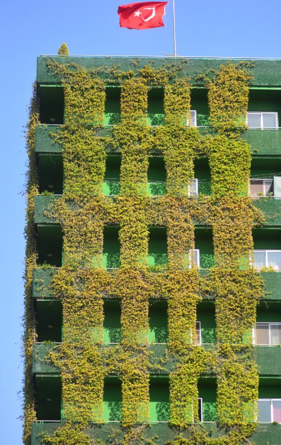 Sarmaşık kaplı 10 katlı apartman