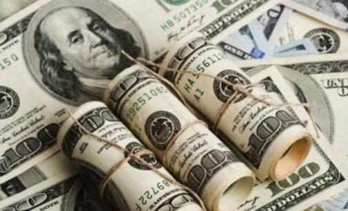 Özel sektörün dış kredi borcu 171.5 milyar dolar