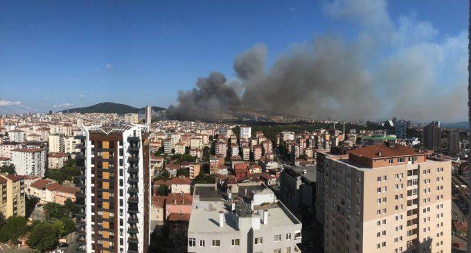 Ciğerlerimiz yanıyor: İzmir, Muğla ve İstanbul'da yangın