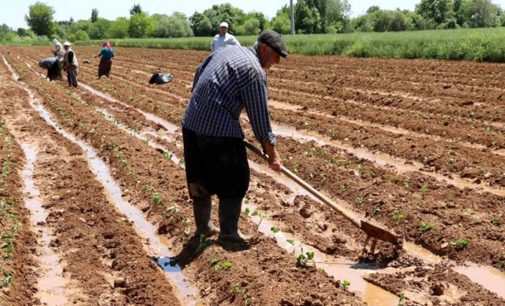 Danıştay'dan kritik karar: Çiftçiye verilen destek üzerinden alınan vergi kaldırılacak