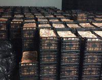 Furkan Vakfı, 'Fakirlere dağıtacağız' diyerek 41 ton et toplamış: Satmayı planlarken yakalandılar