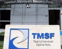 Eski TMSF yöneticisi: 99 şirkete kayyum olarak atananlara 200-250 bin dolar bandında maaş ödendi