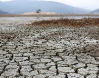 WWF'den kuraklık uyarısı: Türkiye'de 10 şehir yüksek risk listesinde