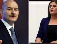 """Süleyman Soylu'nun """"Gara'ya gitti"""" dediği HDP'li vekilden açıklama"""