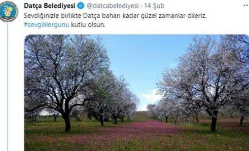 CHP'li belediye Sevgililer Günü tweetini 6 bin dolara sattı: Kız öğrenciler için kullanılacak