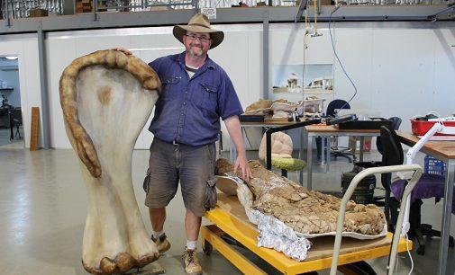 Yaşamış en büyük dinozor türlerinden biri keşfedildi