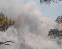 Ciğerlerimiz yanıyor: Antalya'dan sonra beş ayrı şehirde daha yangın çıktı