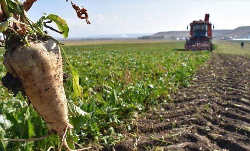 AKP parsel parsel satmaya devam ediyor: Çok sayıda ilde kamuya ait taşınmazın satışı onaylandı