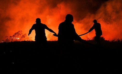 EGM'den orman yangınlarına ilişkin basın açıklaması