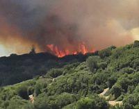 Aynı bölgede bir ayda 10'uncu orman yangını!