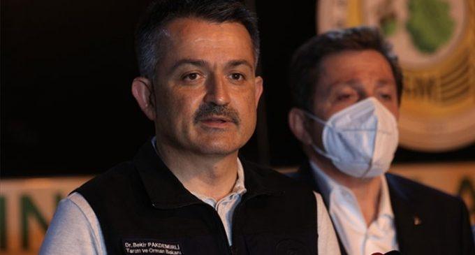 """Kulis: """"Ankara siyasetiyle ilgilenen hemen herkes Orman Bakanı Pakdemirli'ye gidici gözüyle bakıyor"""""""
