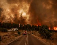 Yunanistan'daki yangınlarında 1 milyon 300 bin dönümlük alan kül oldu