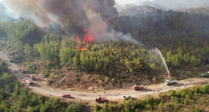 Antalya Orman Genel Müdürü: Manavgat'taki yangında dumanın ısıttığı yer yanmaya başladı