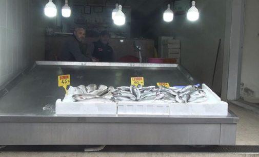 Balık fiyatları ikiye katlandı