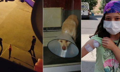 Kendisine havlayan köpeğe mermi yağdırdı, seken mermi 10 yaşındaki çocuğa isabet etti