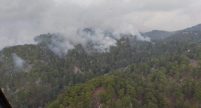 Manavgat'ta düşen yıldırım orman yangınına sebep oldu