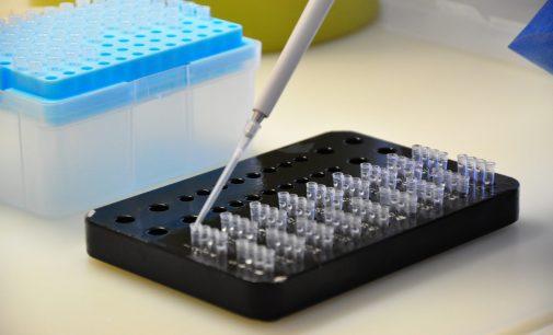 Sinovac ve Biontech aşısının karşılaştırmalı araştırma sonuçları açıklandı