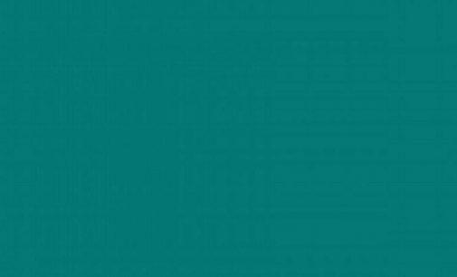 Sosyal medyada gündem oldu: Bu renk mavi mi, yeşil mi?